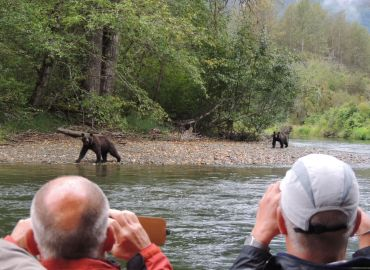 bear viewing grizzly bear tour kynoch adventures bear watching holiday bella coola bc canaca